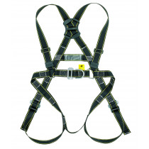 two point full body harness