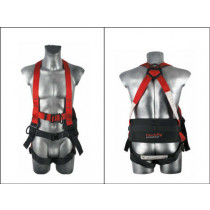 four point harness with waist belt