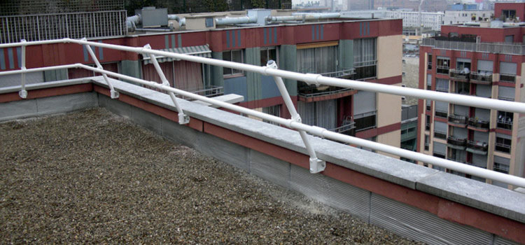 Fixed roof handrail